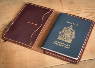 ví đụng passport