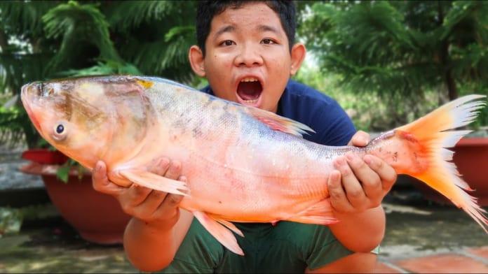 Đặc điểm sinh học đặc trưng của cá mè